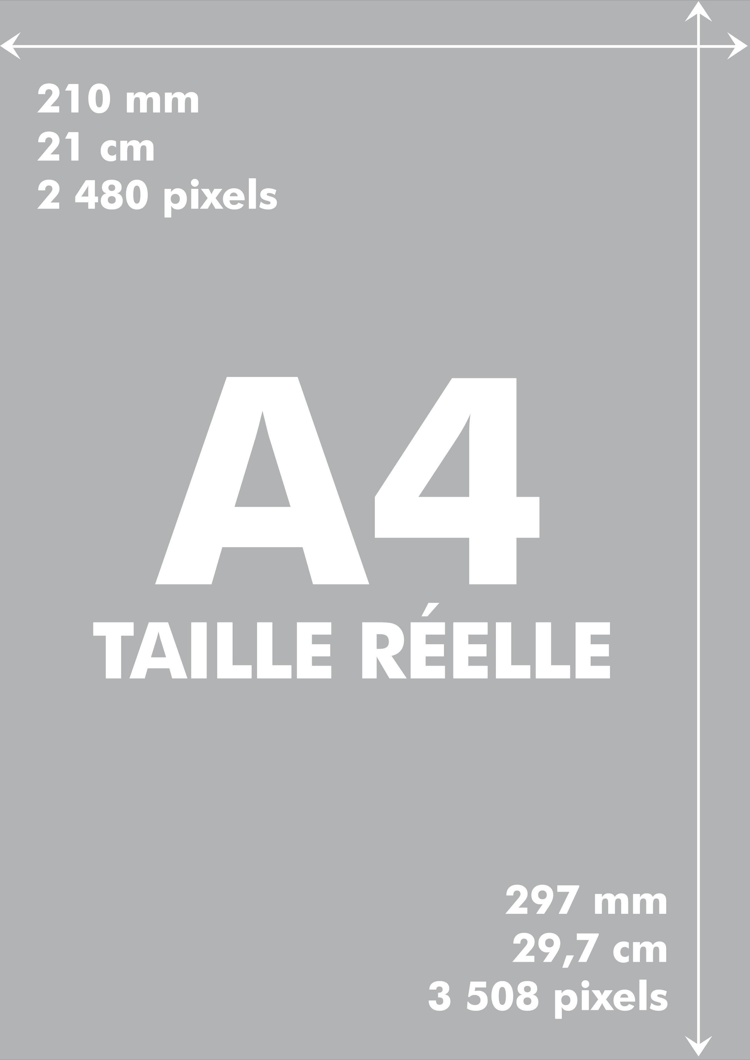 A4 Image A Taille Reelle D Une Feuille De Papier Format A4 Feuille Impressionnisme Images