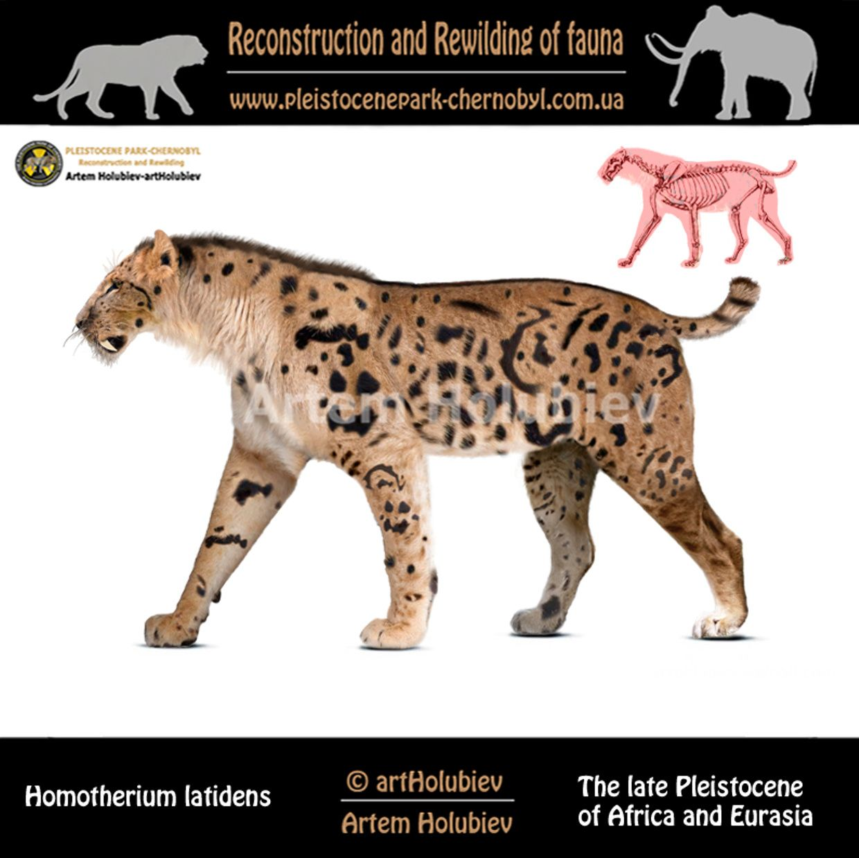 Artem Holubiev is creating Reconstruction of prehistoric animals. Rewilding of fauna. | Patreon
