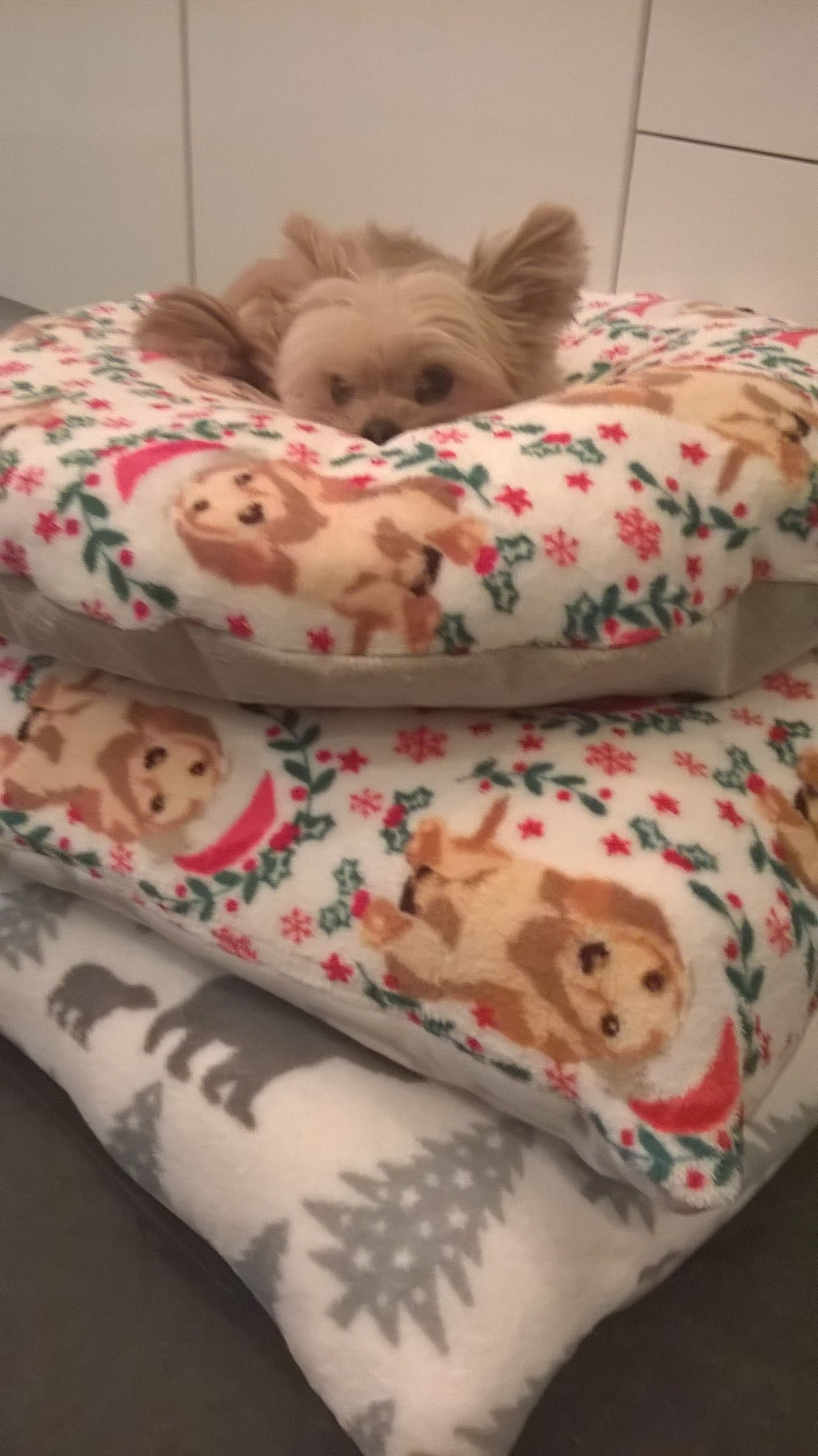 Handmade super-soft Christmas Dog Beds