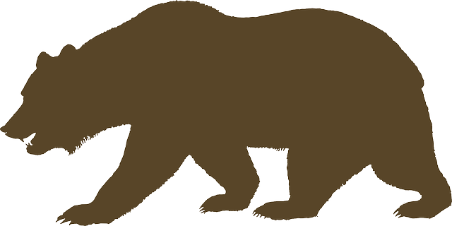 Free Image On Pixabay Bear Animal Brown Silhouette Bear Drawing California Bear Tattoos California Bear
