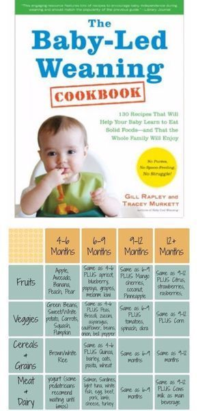 Baby Led Weaning Tips, Recipes, First Foods and More - Clever DIY Ideas