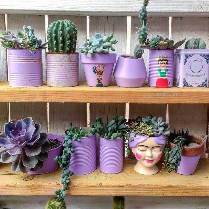 "Nursery Indoor Plants Near Me: Lola Tiliches On Instagram: ""#situacionsentimental Ni"