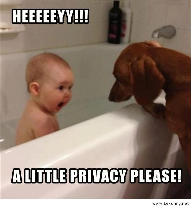 Baby Pictures With Funny Quotes: Funny Jokes - Photos