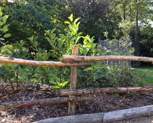 Barrires de jardin en bois  Jardin  Pinterest  Garden Design et Garden