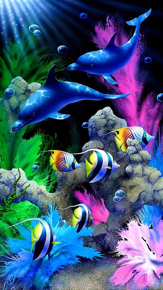 Colorful Dolphins Animals Dolphins Colorful Fish