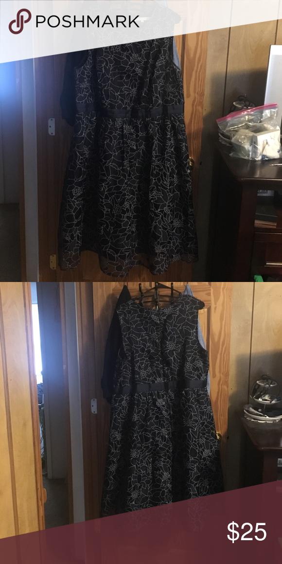 Dress Navy blue dress from Dressbarn. Dress Barn Dresses