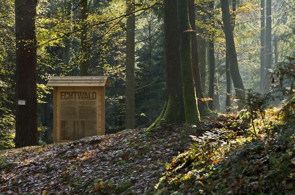 Echtwald