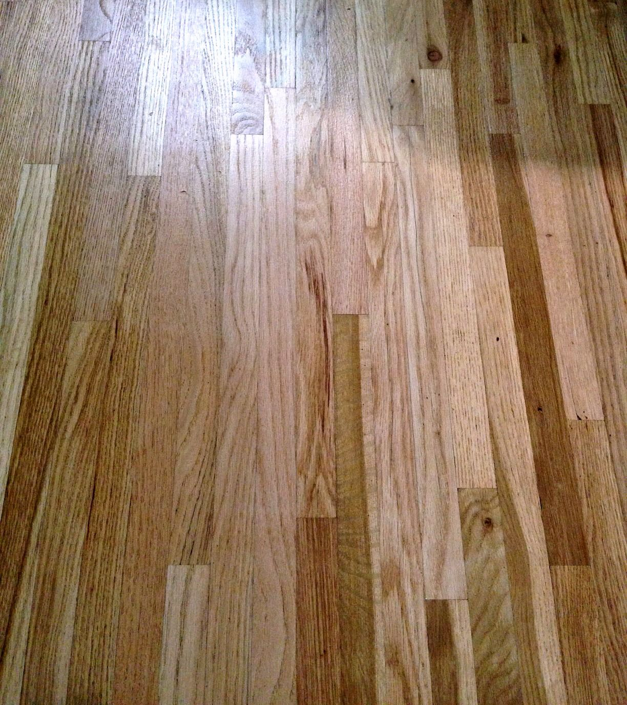 Removing Urine Stains From Hardwood Floors Hardwood Floors Staining Wood Floors Flooring