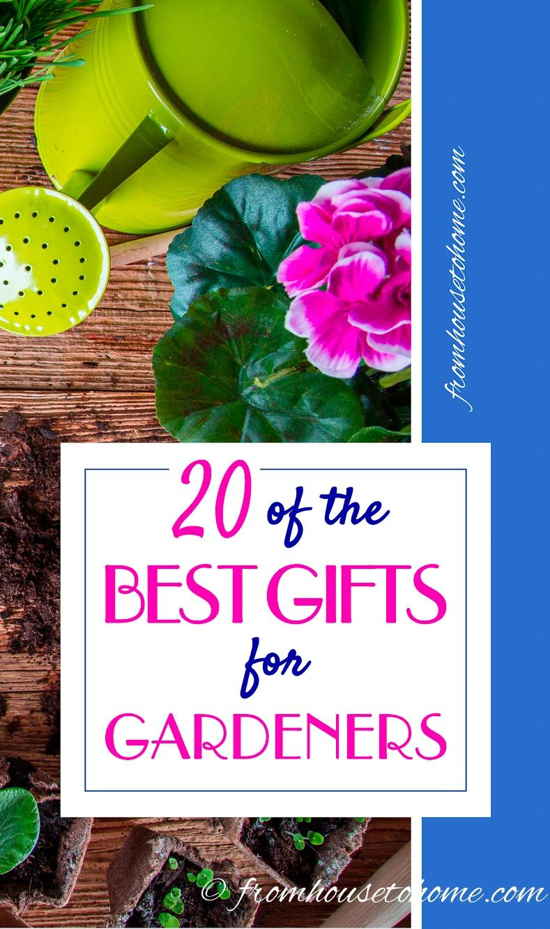 2017 Garden Gift Ideas: 20 Of The Best Gifts For Gardeners