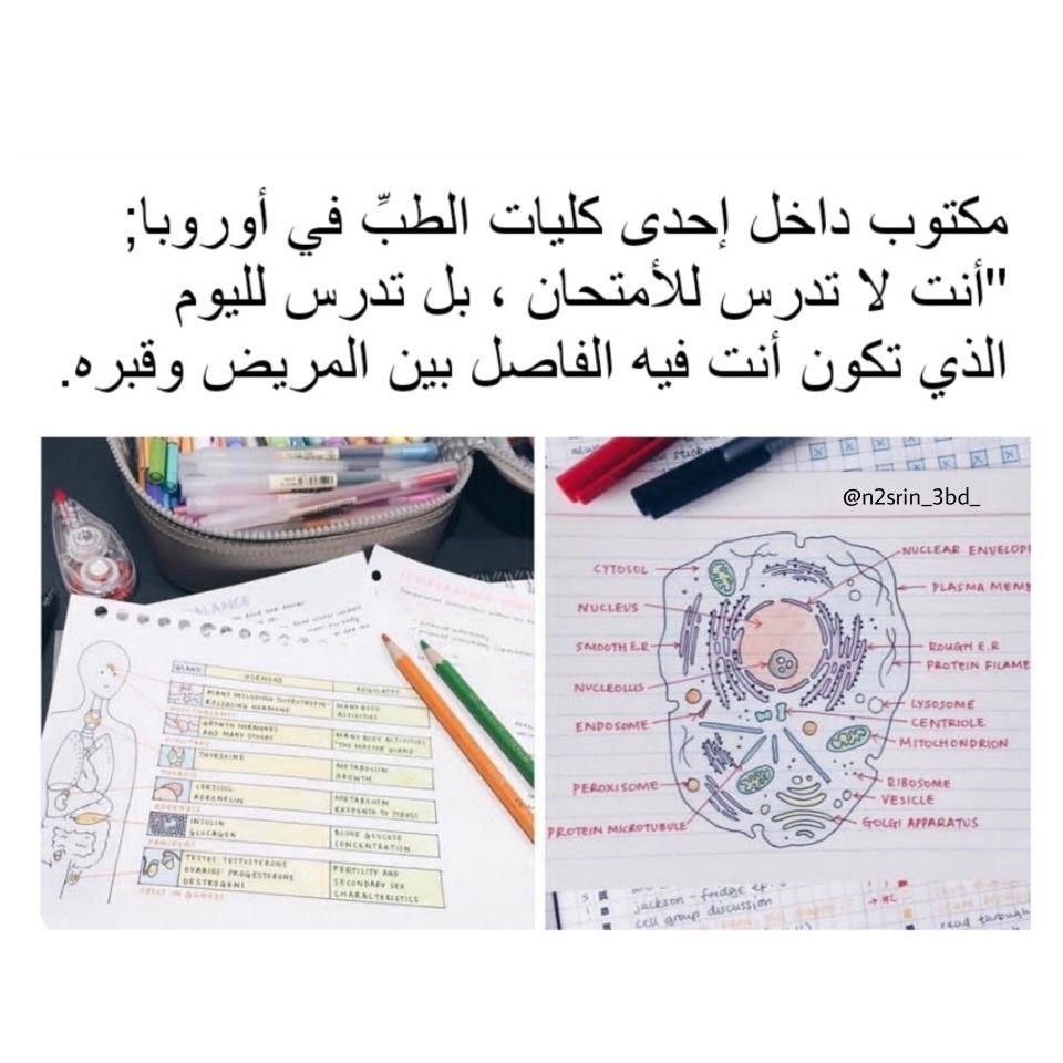 الطب رحمة قبل إن يكون مهنة دين وأخلاق قبل أن يكون علم إنسانية قبل ان يكون عمل Math Arabic Calligraphy Math Equations