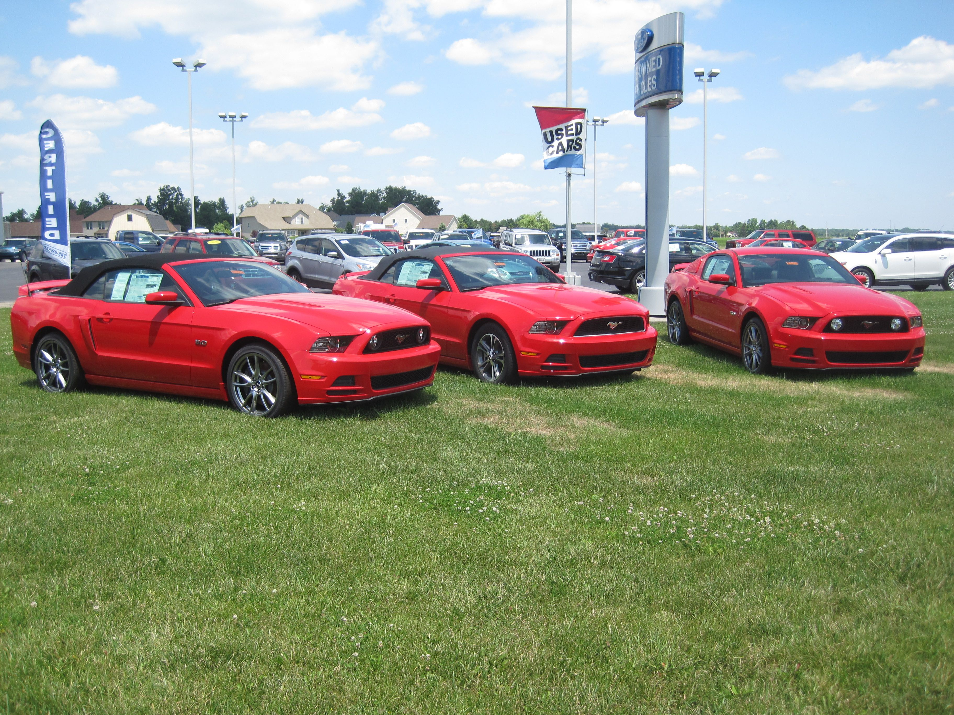 Ford Mustangs at Steve Rogers Ford #ford #mustang #auto & Ford Mustangs at Steve Rogers Ford #ford #mustang #auto | Ford ... markmcfarlin.com