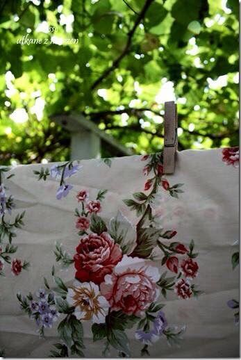 Blumenwiese Englisch pin bonadea auf omi blumenwiese und wäsche