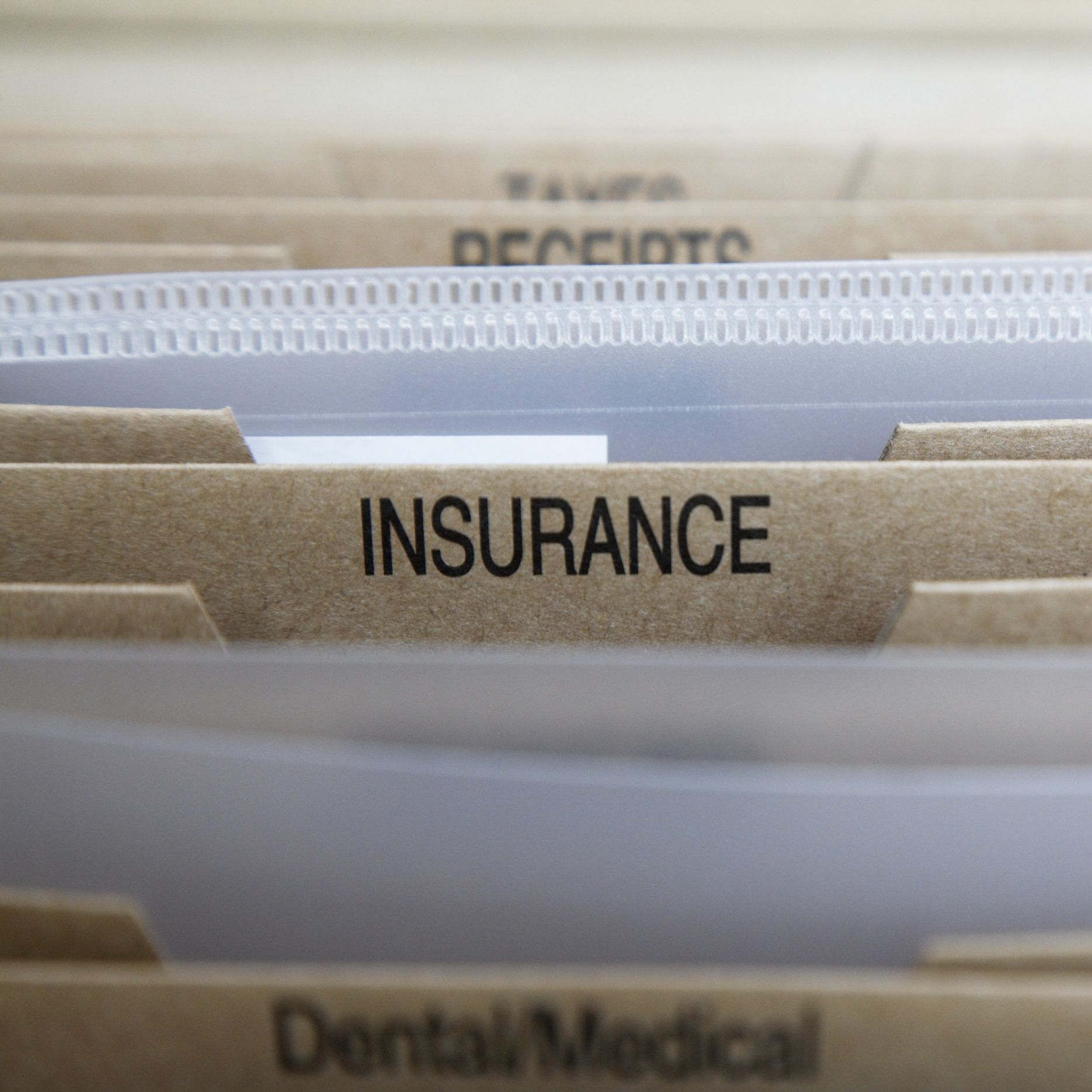Insurance fraud tips and examples pet insurance cost
