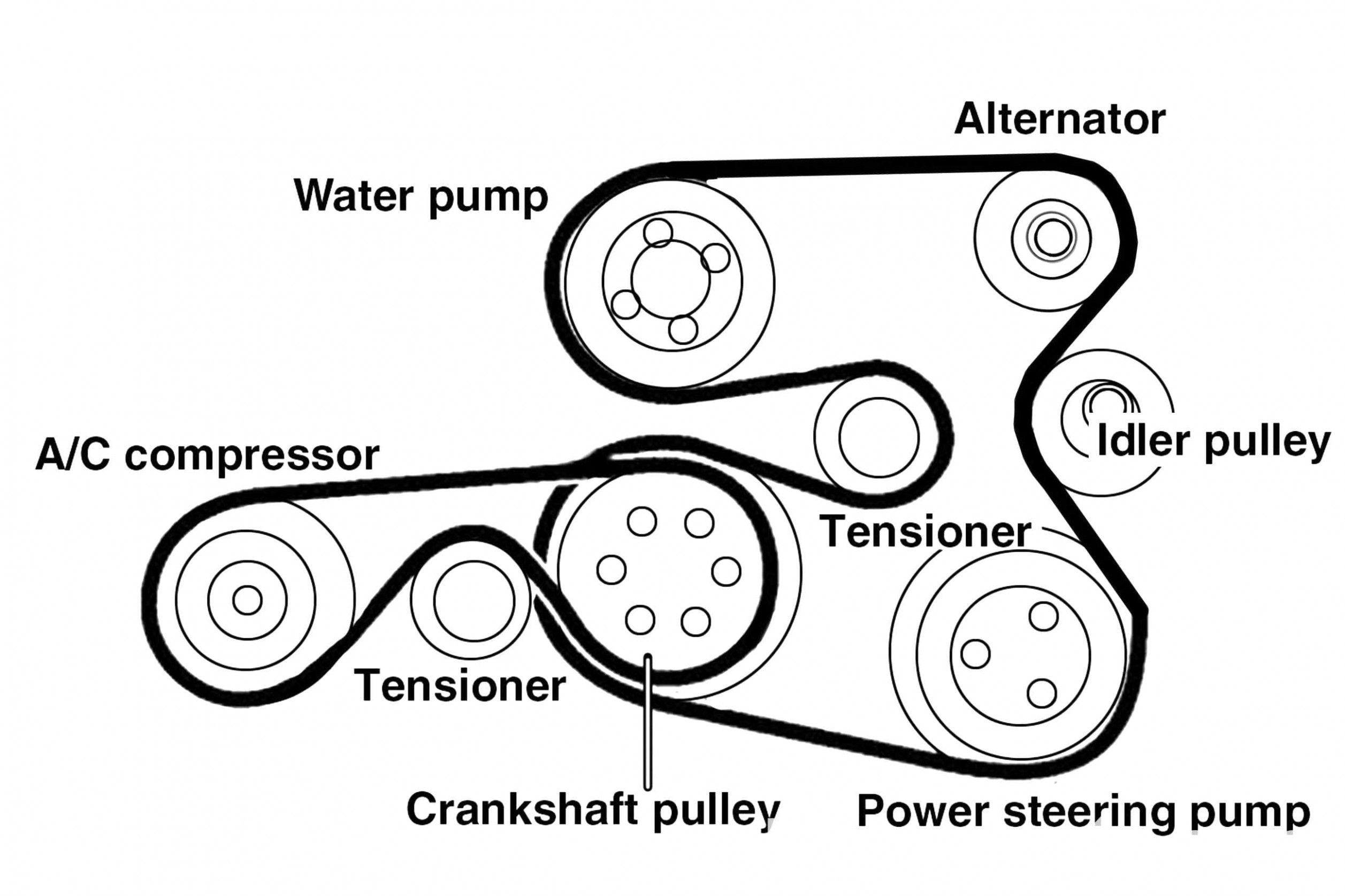 Engine Serpentine Belt Diagram Di