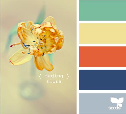 kitchen colors....