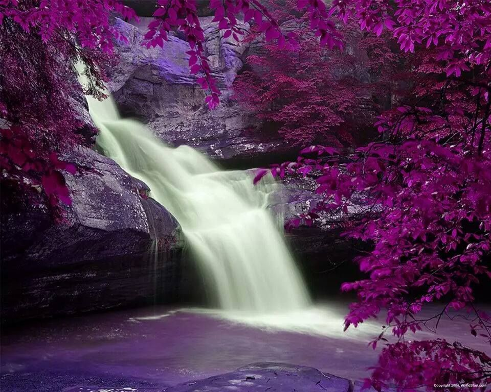 Beautiful Purple Waterfall Also Check Out Www Earnmoneyperlisting Com Waterfall Purple Beautiful Waterfall Beautiful Waterfalls Beautiful Nature