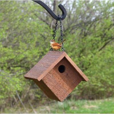 20 In X 8 In X 7 In Birdhouse In 2020 Wooden Bird Feeders Cool Bird Houses Bird Houses