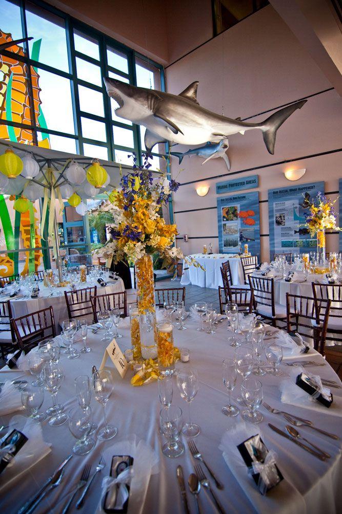 Birch Aquarium At Scripps In 2018 Wedding