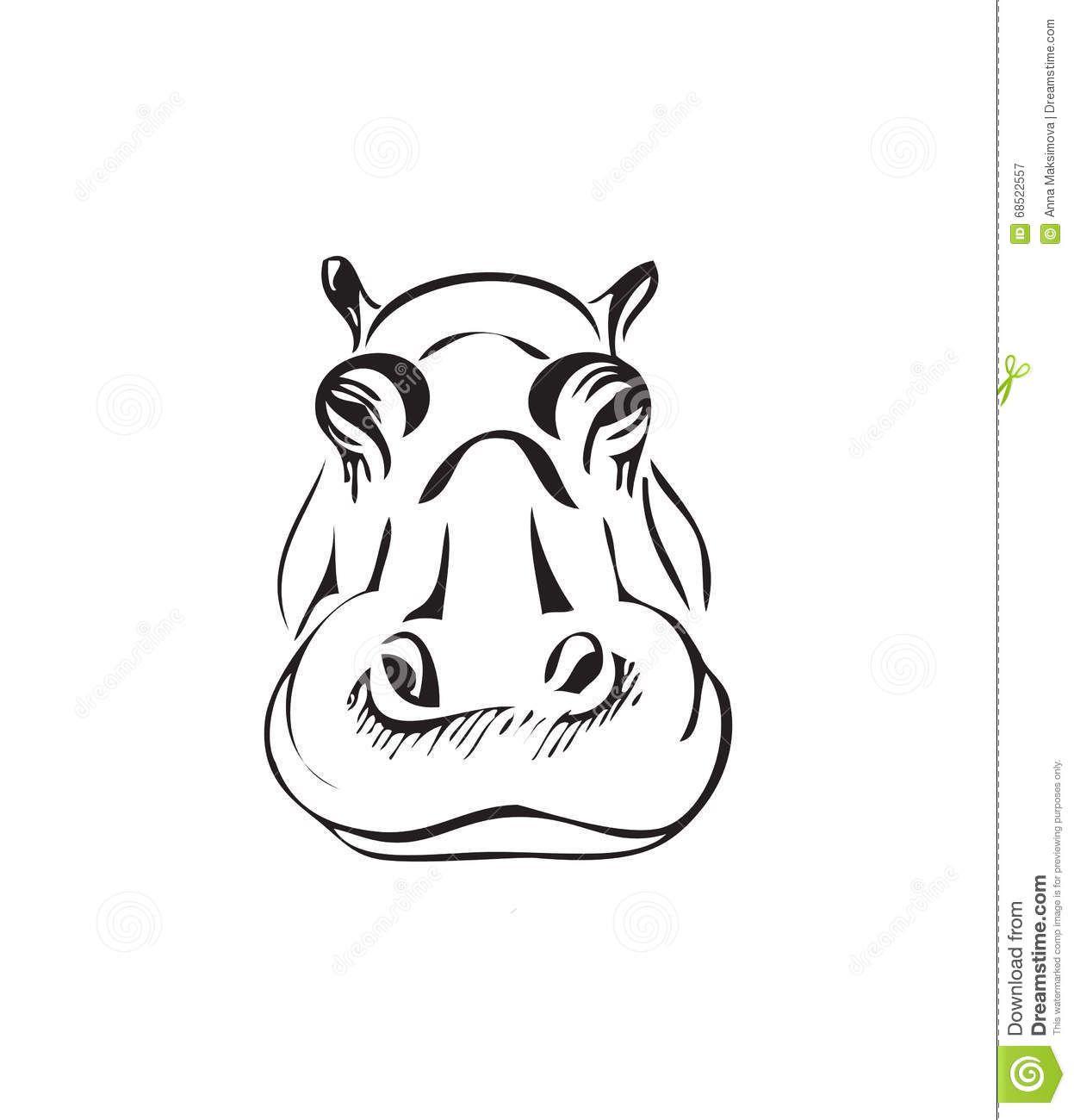 T te d 39 un hippopotame illustration de vecteur image - Dessin d hippopotame ...
