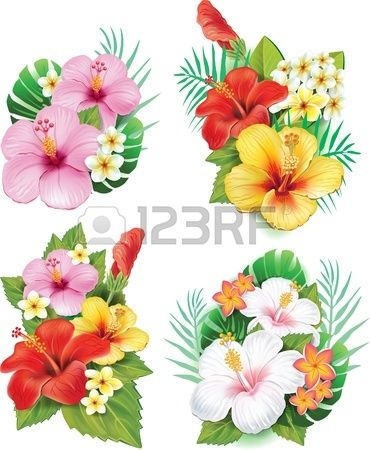 Arrangement de fleurs d 39 hibiscus dessin pinterest - Fleure hawaienne ...