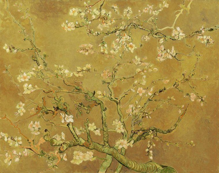 Van Gogh Behang : Amandelbloesem van vincent van gogh oker van meesterlijcke