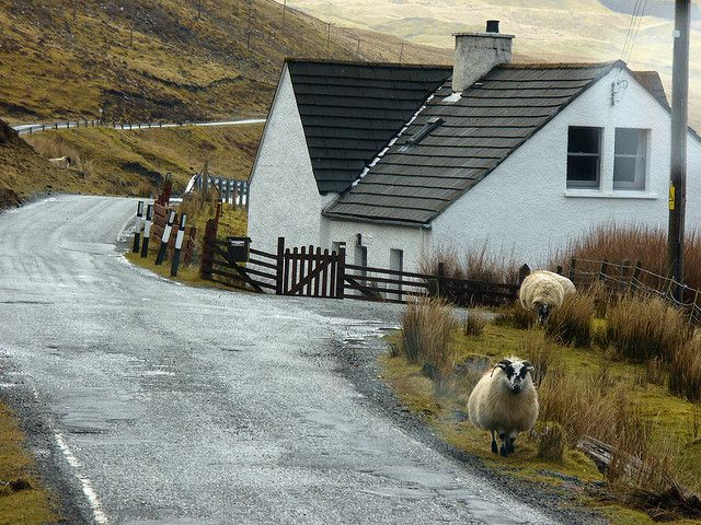 Skye's Traffic Jams | Flickr -
