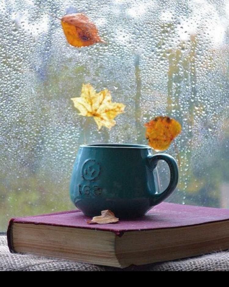 древних времен дождливое осеннее утро понедельника картинки мусульмане