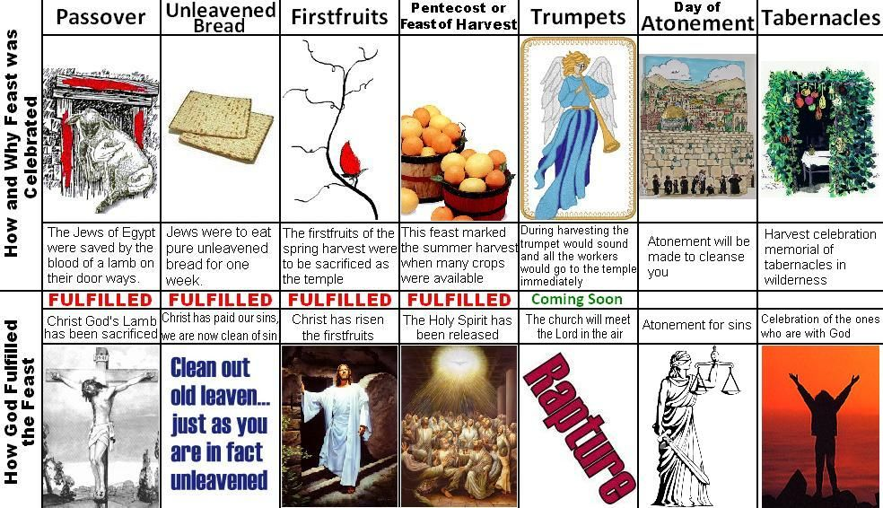 The Beautiful Picture of the Seven Feasts of Israel | Israel, Bible and Lord