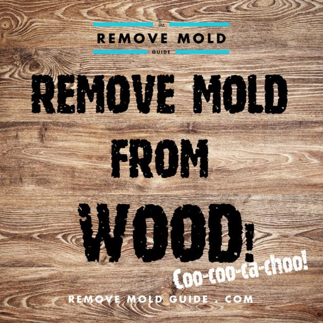 Remove Mold From Wood 2014 Guide To Mold Removal Mold Remover