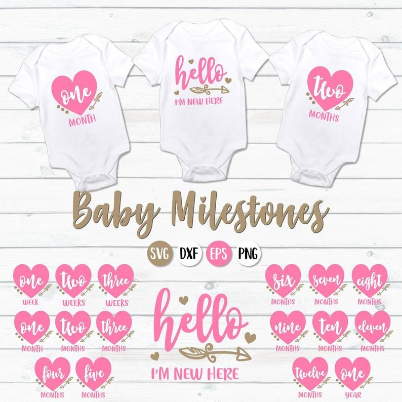 Baby Milestones Svg Baby Months Svg Monthly Milestones Svg Etsy In 2020 Baby Milestones Babies First Year Baby Svg