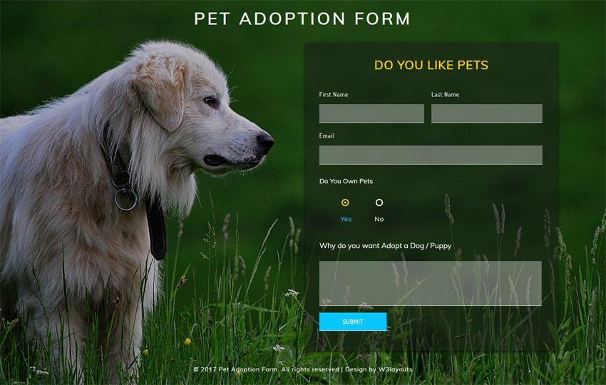 Image result for dog website layout design Dog websites