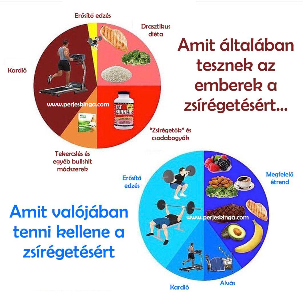zsírvesztés és egészséges)
