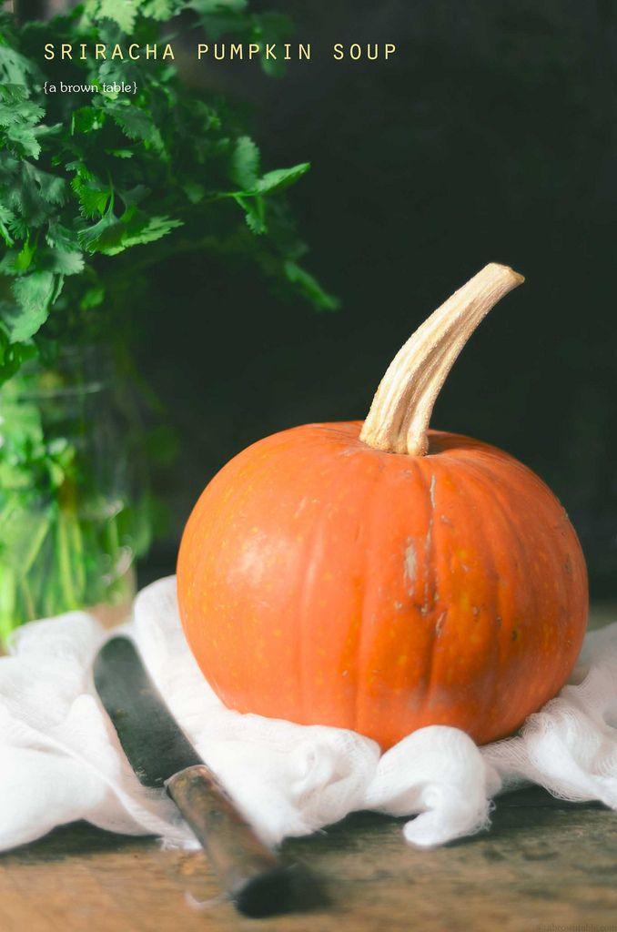 Suagr pie pumpkin
