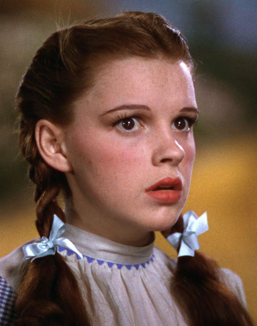 The Wizard Of Oz Wizard Of Oz 1939 Dorothy Wizard Of Oz Wizard Of Oz Characters