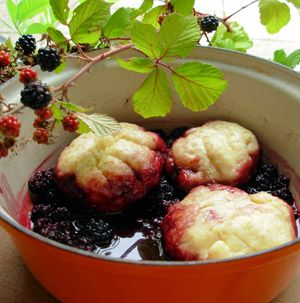 Michaelmas Dumplings.  Fluffy little dumplings for  Michaelmas using traditional, seasonal ingredients.  This is a wonderful way to end an autumn meal. Serve these dumplings with fresh pouring cream or homemade custard. [more Michaelmas recipes on the link]