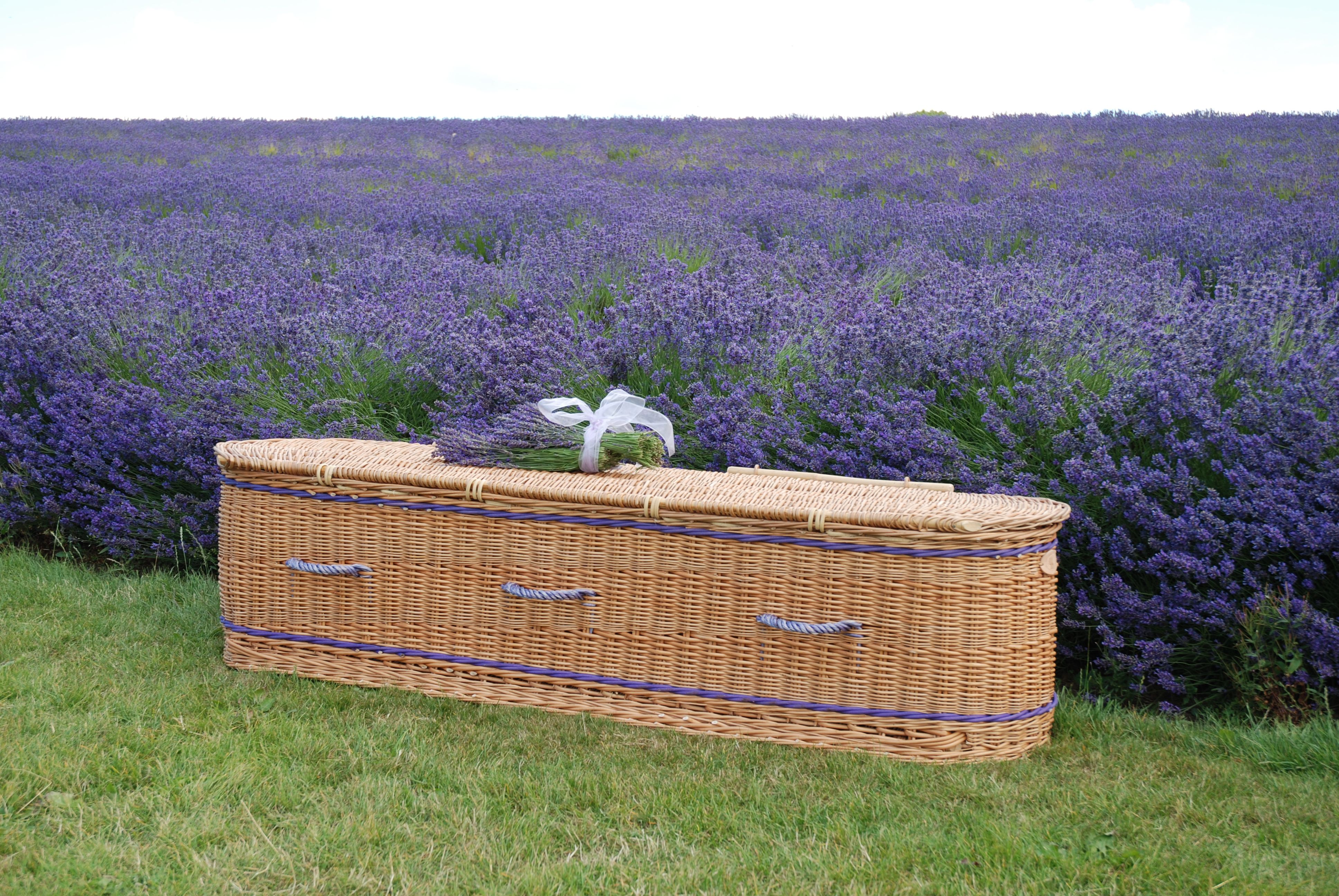 Curved end casket in buff willow and inlaid with woven