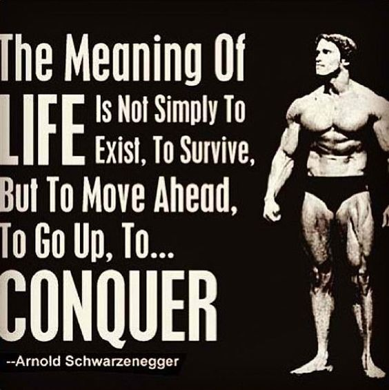Arnold+schwarzenegger+quote
