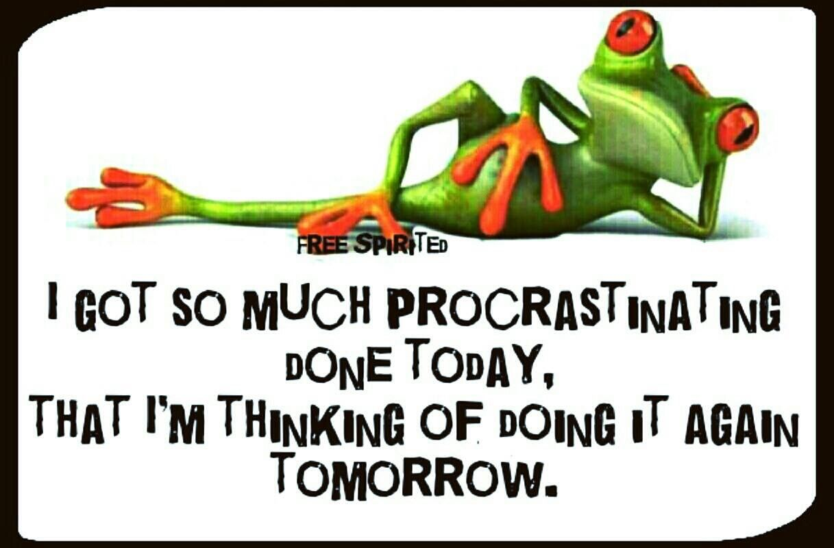 Pin By Pannapadipa David Street On Words And Letters Frog Quotes Funny Frogs Frog Facts