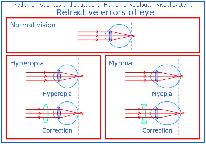 Ocular Anatomy Coloring Book : Human eye anatomy and physiology sample 9 human anatomy