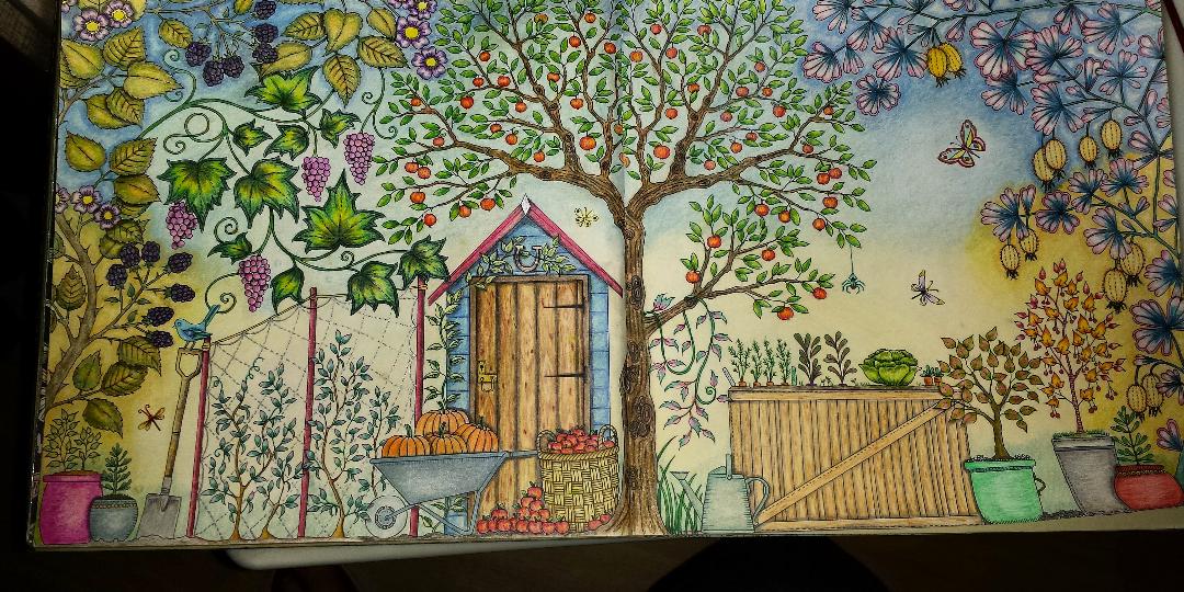 Таинственный сад примеры раскраски, лесу