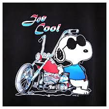Image result for joe cool