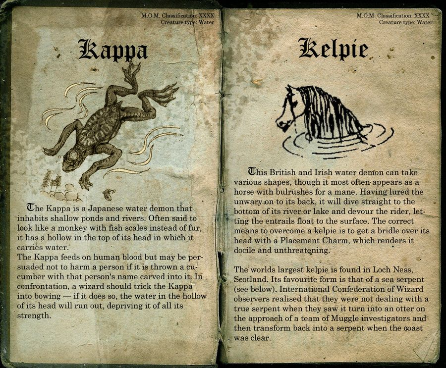 Kappa And Kelpie Page 39 Harry Potter Creatures Harry Potter Fantastic Beasts