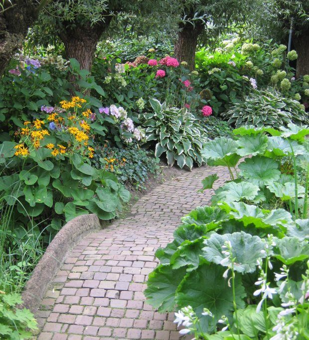 Shady areas can still be great areas for cottage gardens when you