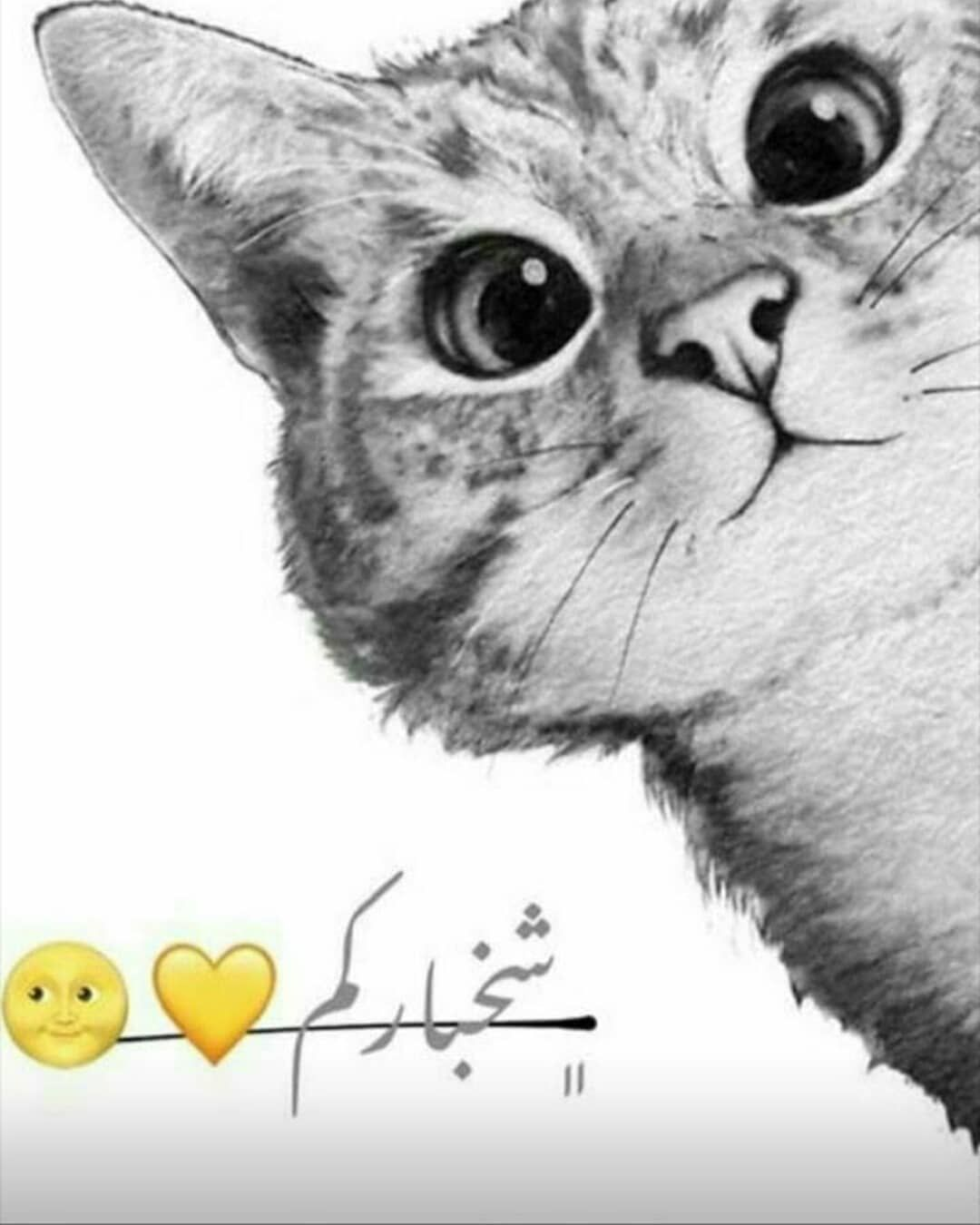 Pin By Gloria B On Arabic Quotes Arabic Love Quotes Arabic Quotes Instagram Posts