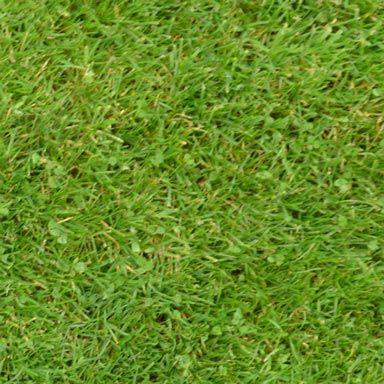 Textures Libraries 1 0 Sweet Home 3d Blog Grass Textures Best Grass Seed Grass Texture Seamless