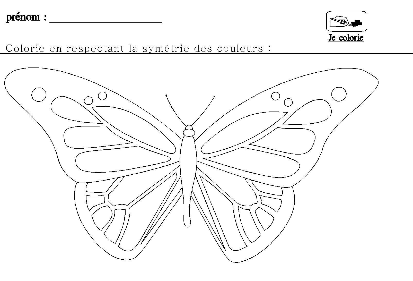 La sym trie en maternelle pour grande section papillon - Coloriage symetrie ...