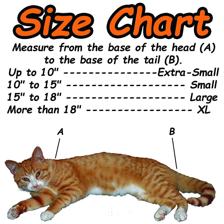 d2536a9606f Amazon.com : Cat-in-the-bag Cozy Comfort (E-Z Zip) Carrier Large, Light  Blue : Pet Supplies