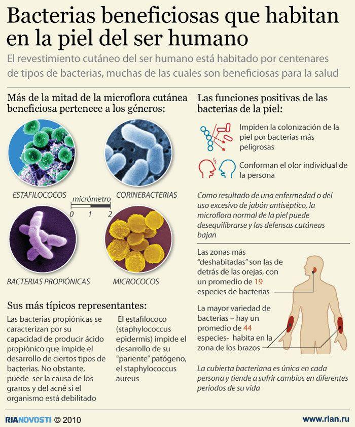 bacterias buenas de la piel