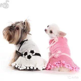 вязаная одежда для собак схемы 24 тыс изображений найдено в яндекс