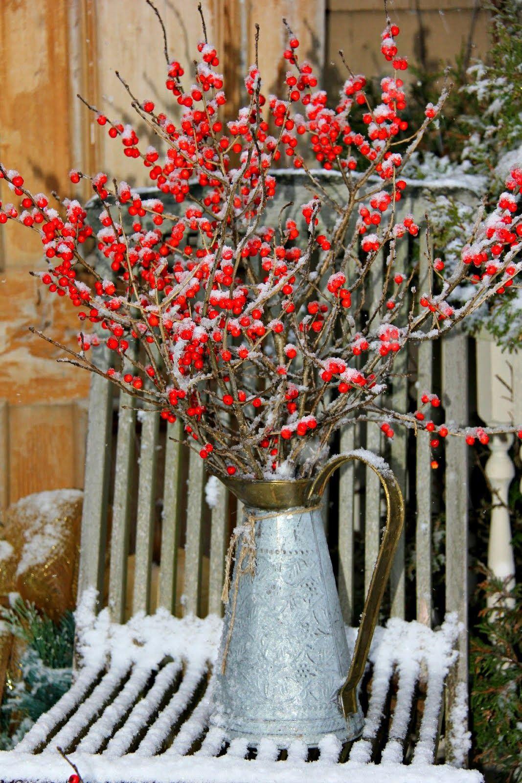 Aiken house u gardens first touch of winter xmas u winter joy
